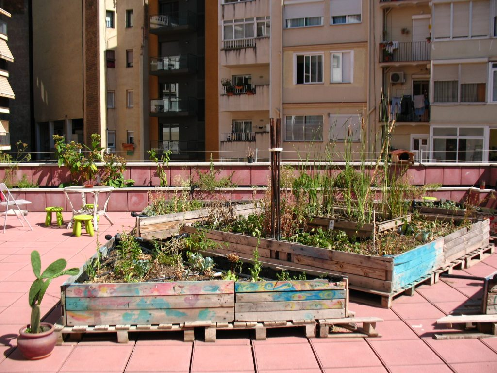 Terraço da Aurea Social, Barcelona